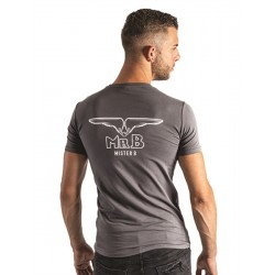 Mister B T-shirt Grey cotone grigio